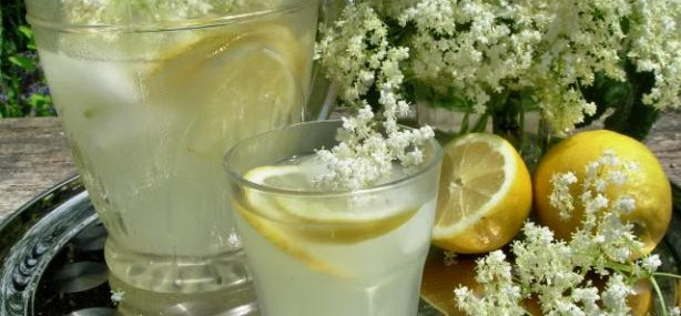 May Day, Foraging and a Prelude to Summer – Old Fashioned English Elderflower Cordial