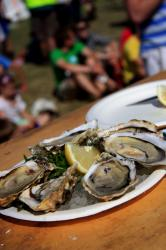 Lots of Fun and Oysters at The Rock Oyster Festival: 22nd to 24th June 2012