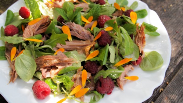 Duck, Raspberry and Marigold Salad
