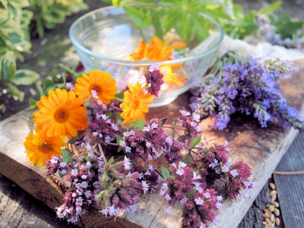Lavender and Lace, Roses and Salt with Sarah Raven ~ A Posy of Flowers in the Kitchen with Interflora