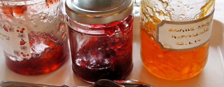 Giveaway: Win an eBook about Preserves by Vivien Lloyd, Author of First Preserves