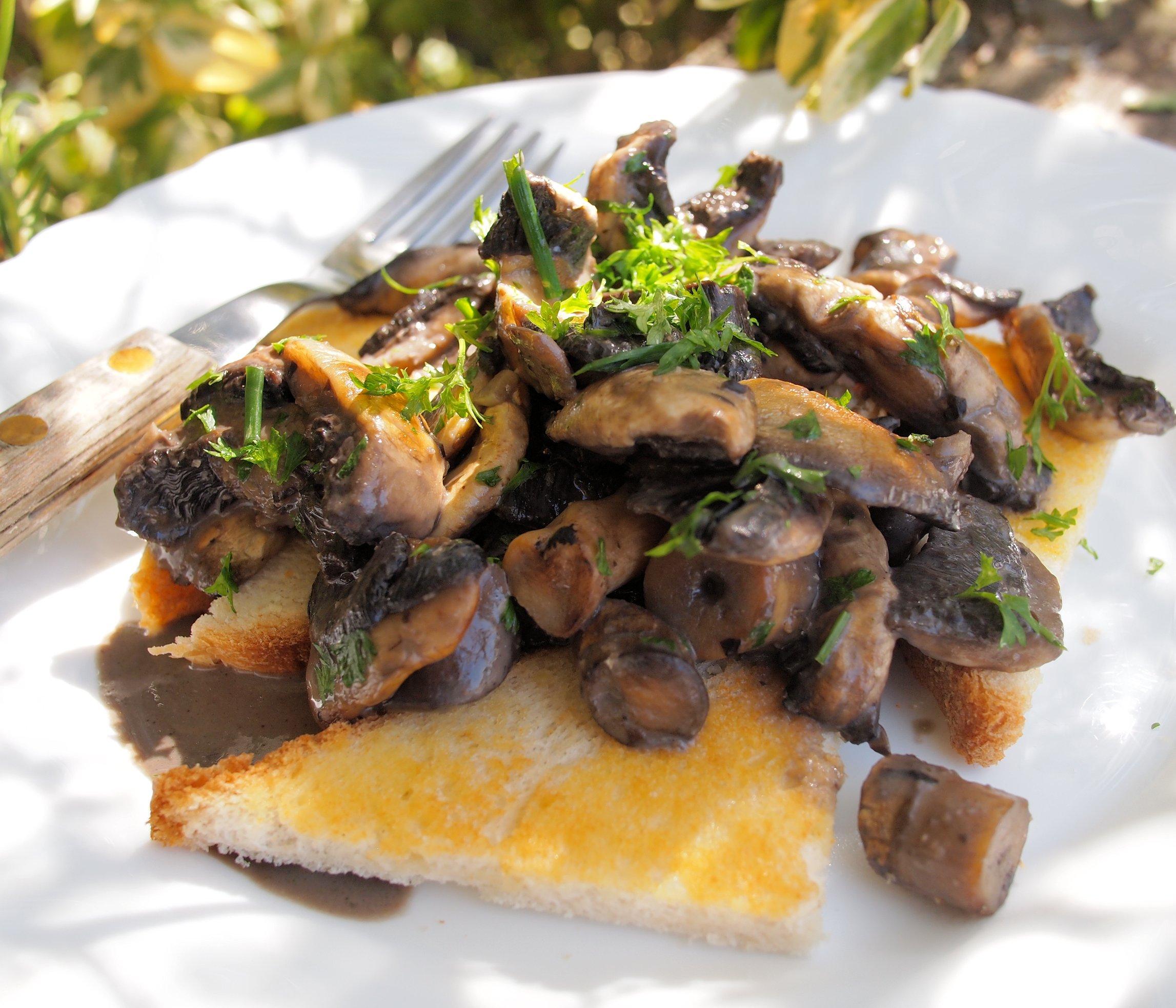 Creamy Garlic Mushrooms on Toast