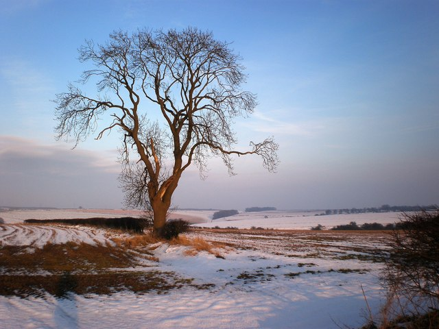 Snow on the North Yorkshire Wolds