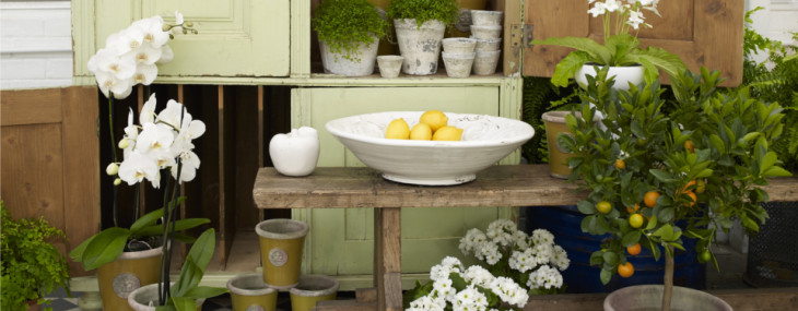 Giveaway: Win 5 pairs of Tickets to The Spirit of Summer Fair with Clifton Nurseries