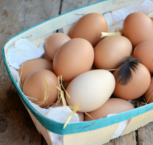 Fresh Free-Range Eggs
