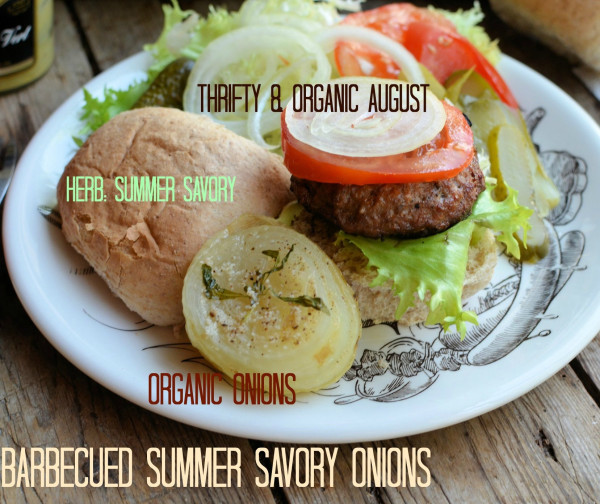 BBQ Summer Savoury Onion and Hamburgers Banner