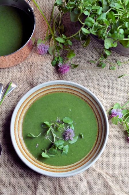 Chive and watercress soup