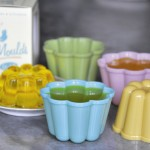 Pantry Design Set Of 4 Jelly Moulds