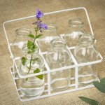 Set Of 6 School Milk Bottles In Crate