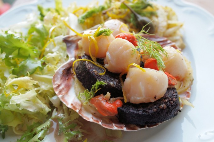 Pan-fried Scallops with Black Pudding and Warm Fennel Salad
