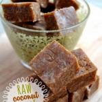 Coconut Fudge 4