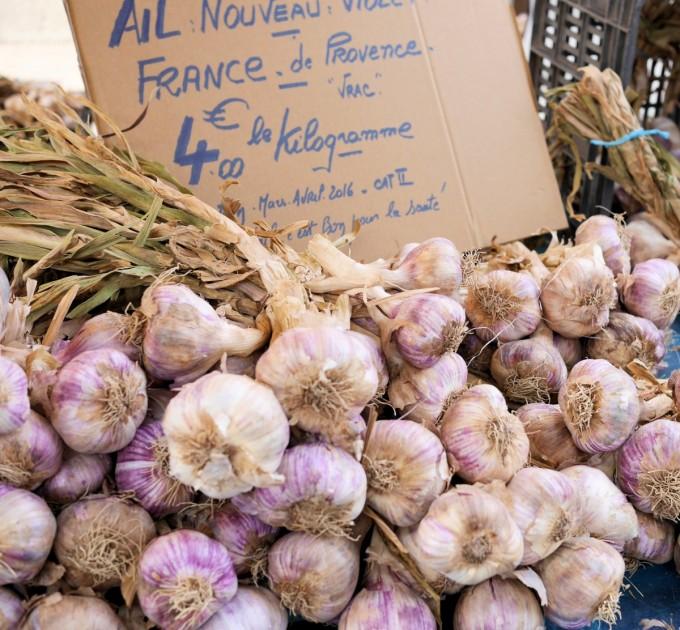 Fresh Garlic Provence