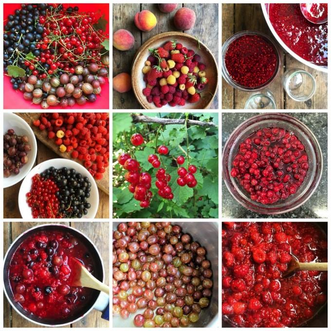 Garden Fruit and Berries