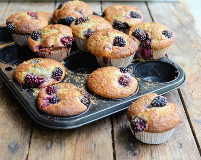 Blackberry Fairy Cake Buns Muffins
