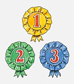 1st 2nd and 3rd rosettes