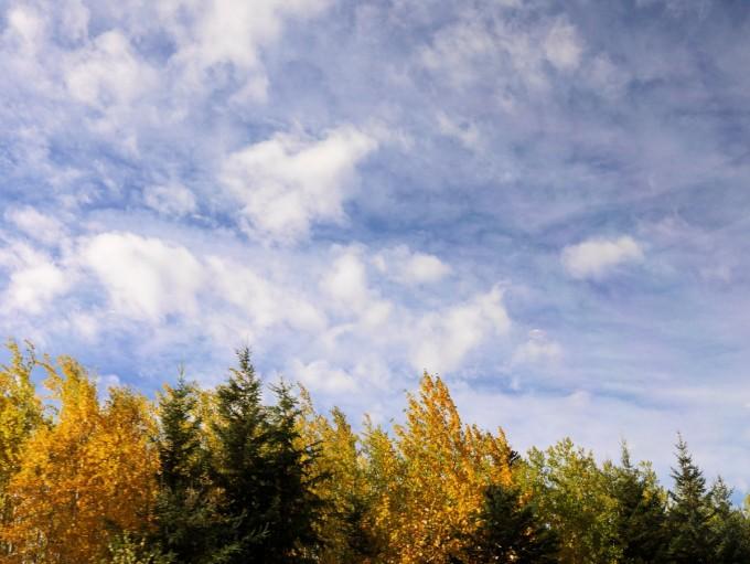 Autumn Sky from The Panorama Car