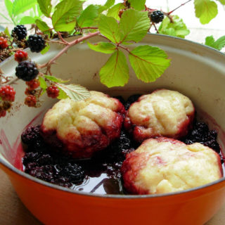 Michaelmas, Blackberries, Devils Spit Day and Michaelmas Dumplings