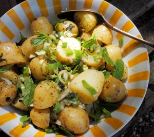 Hot New Potato Salad with Mint and Spring Onions