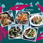 Switch the Fish! A Fishy Friday Frolic with Coley, Mussels and Sea Bass Recipes