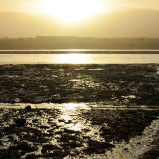 A Visit to Halen Môn Sea Salt PDO on Anglesey