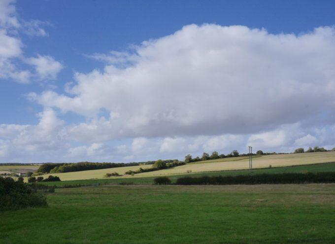 Marshwood Farm